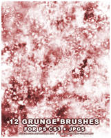 12 Grunge Brushes for PS CS3 by wickedjess