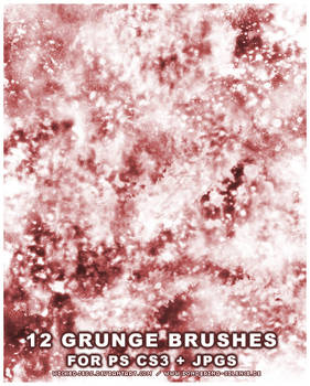 12 Grunge Brushes for PS CS3