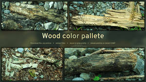 Wooden colors | GIMP color palette