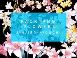 Pack PNG Flower by Jinjiro-Higuchi