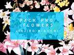 Pack PNG Flower