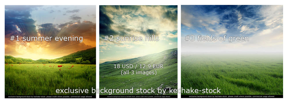 Field Pack by Kechake-stock