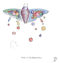 Bubble Moth 08