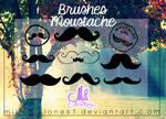 Brushes Moustache