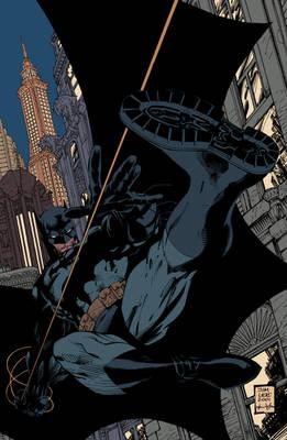 Batman: Hush Cover FLATS