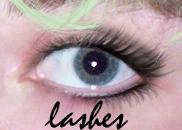 Eyelash Brushes by shakealicious