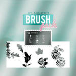 NATURE BRUSH PACK BY NIIH TVD