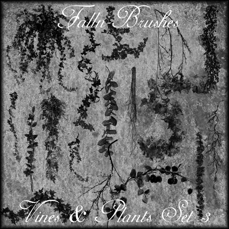 Vines And Plants Brushes Set 3