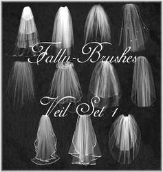 Veil Brushes Set 1