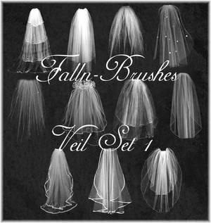Veil Brushes Set 1