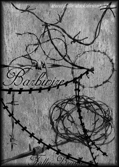 Barbwire Brushes