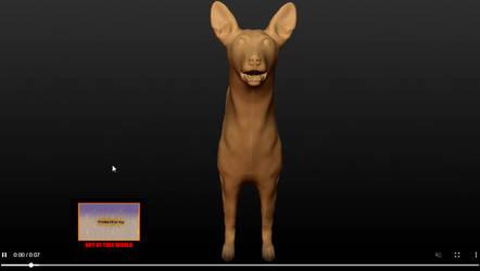 Pharaoh Hound, animation