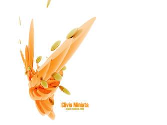 Clivia miniata by di-ck