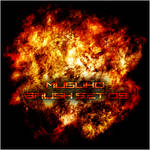 Explosion Brushes 09