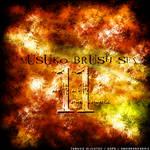 11th Brush Set