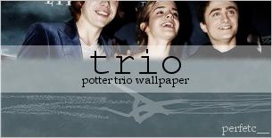 Potter Trio Wallpaper by perfetc