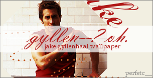 Jake Gyllenhaal Wallpaper by perfetc