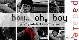 Jared Padalecki Wallpaper