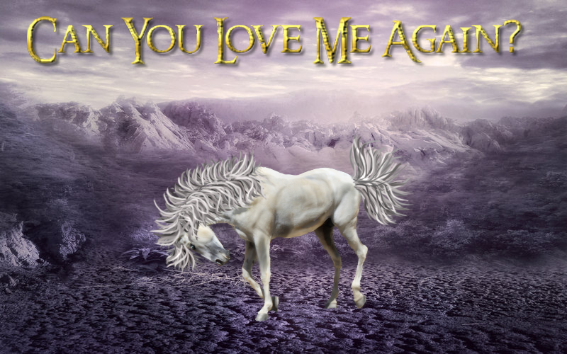 Can You Love Me Again?