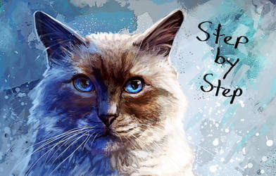 Ragdoll Cat - Step by Step by FleetingEmber