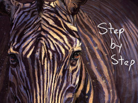 Zebra Step by Step