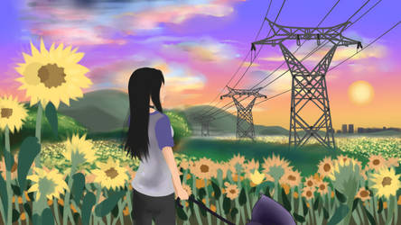 Animation Sunflower fields sketch