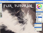Fur Tutorial by wildpaintings