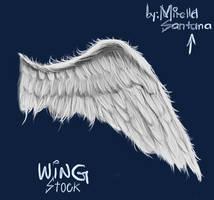 ANGEL WING - STOCK (PSD) by MirellaSantana