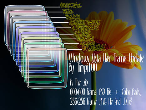 Vista User Frame Update