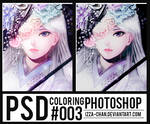 || PSD Coloring || #003 ||