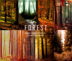 FOREST- Wattpad Textures by camiladearmas481