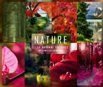 NATURE- Textures
