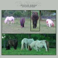 Horses 1 by E-Stock