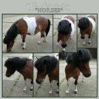 Horses 2 by E-Stock