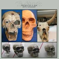 Skulls 1 by E-Stock