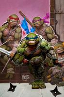 ninja turtles cover for idw