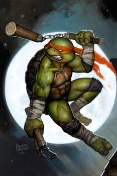 ninja turtle cover for idw macro series