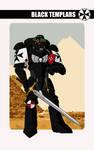 Black Templars Primaris
