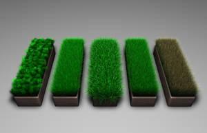 Cinema 4D - Gress-Grass by Neon-Monkey