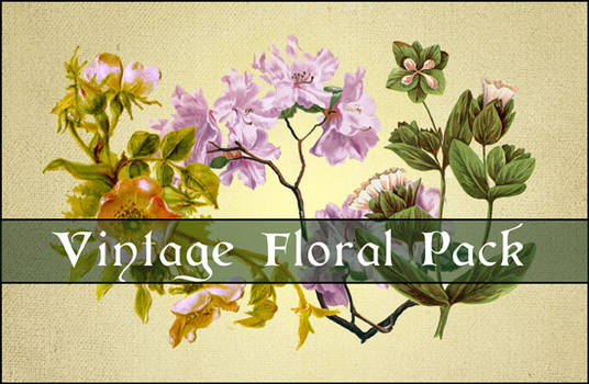 3 Extracted Vintage Florals PSD