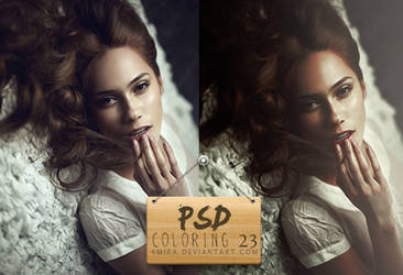 Psd #23 by 4mira