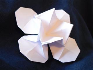 Origami diagrams 2
