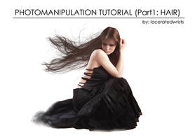 PhotoManipulation Part1 Hair by laceratedwristsstock
