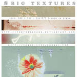 8 big textures - flower in