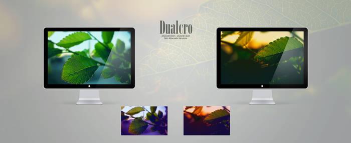 Dualcro