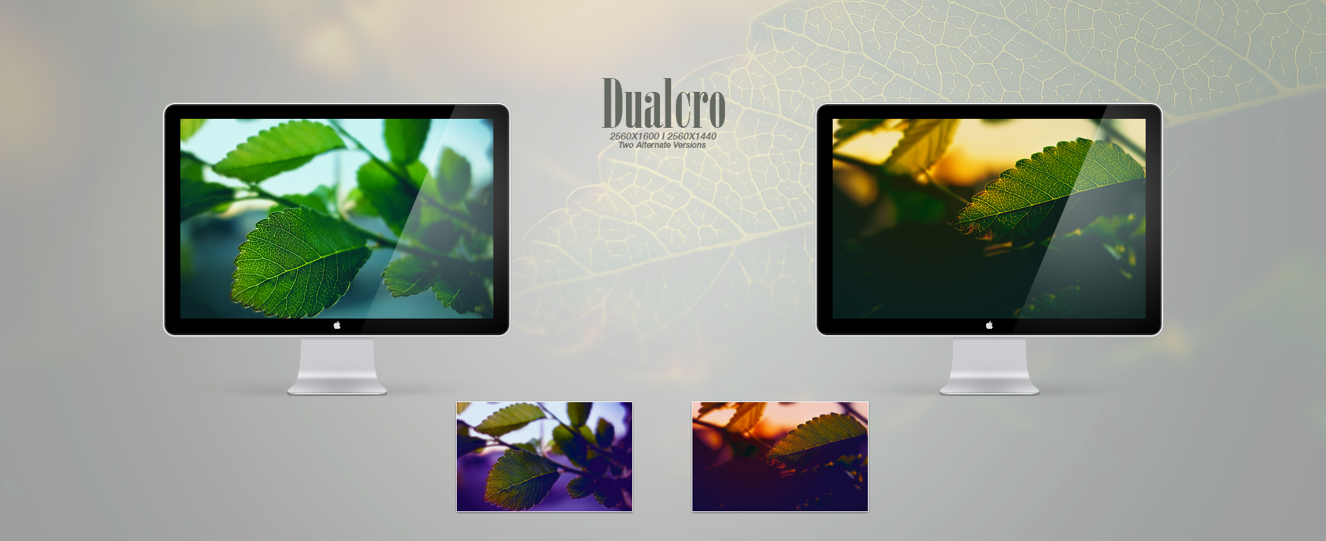 Dualcro by Delta909