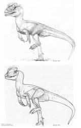 Dilophosaurus wetherilli - GIF