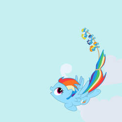 Rainbow Dash and Her Toys