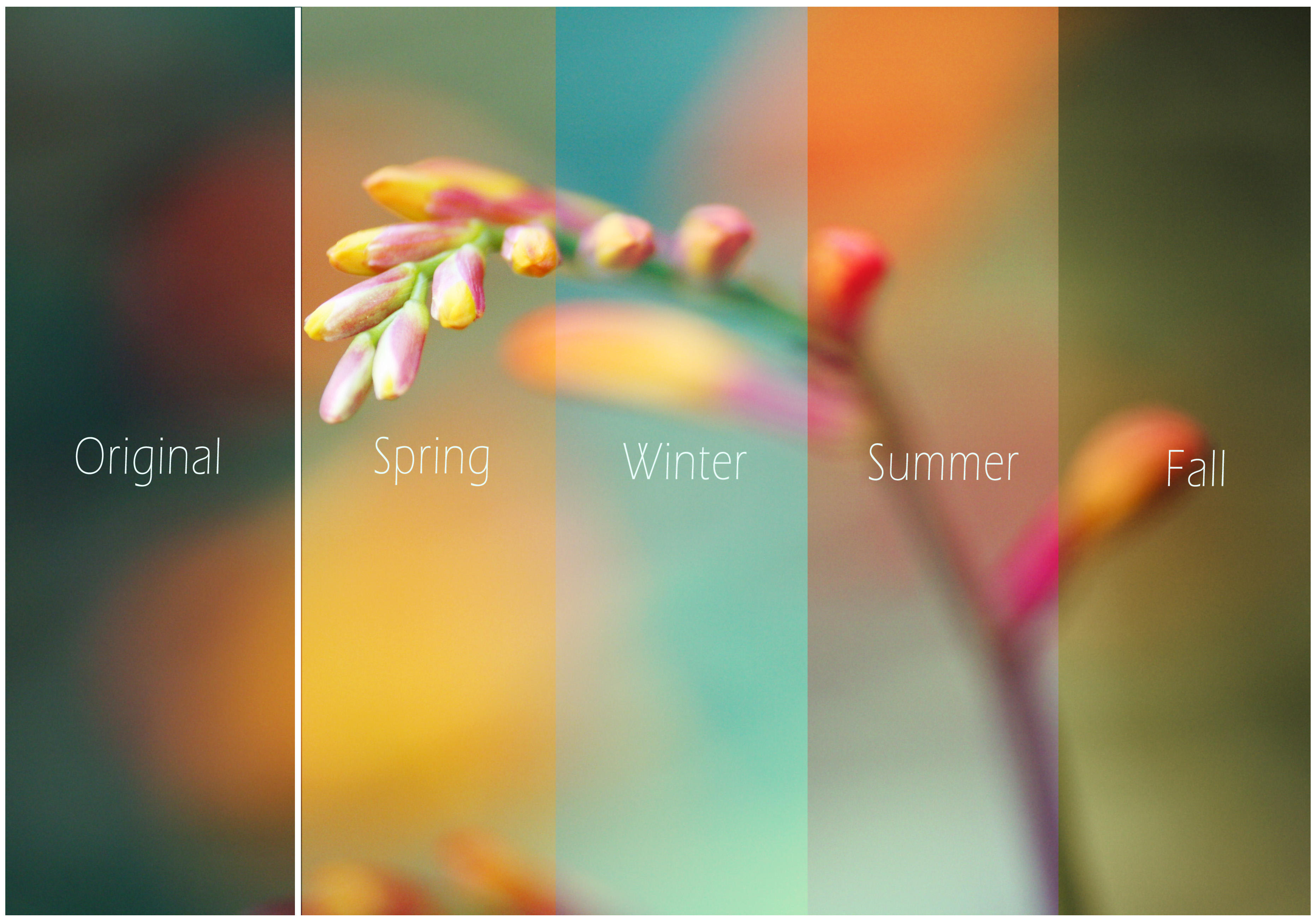 Seasonal Actions by FallOutGirl9001
