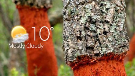 Weather RF by rodfdez